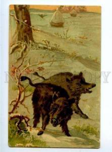 156530 Winter Hunt WILD BOAR Great Vintage Colorful PC