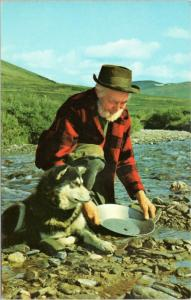 Herb Engstrom - panning for gold with dog in Nome Alaska