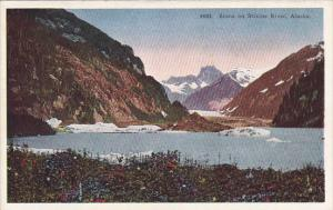 Alaska Scene On The Stikine River
