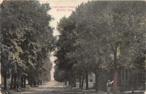 Butler Indiana~East Green Street~Man Leaning against Tree~1908 Postcard