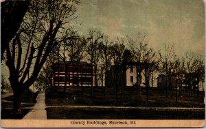 County Buildings Morison Illinois Postcard