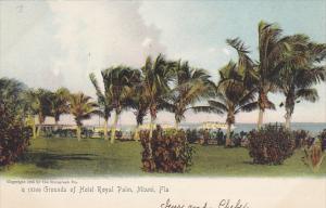 Florida Miami Grounds Of Hotel Royal Palm  Rotograph