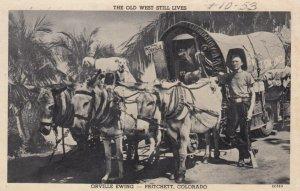 Donkey wagon , Orville Ewing , PRITCHETT , Colorado , 1953