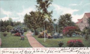 New York Watkins Glen View On Nauheim Park The Glen Springs 1908