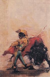AS: Matador dodging bull, Mexico, 00-10s