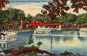 Florida Silver Springs Glass Bottom Boats 1949 Curteich