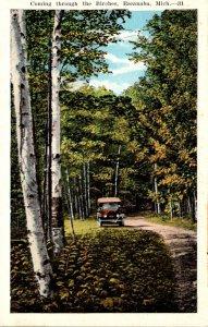 Michigan Escanaba Coming Through The Birches