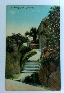 Bermuda Stone Steps Winding Path Flowers Palm Trees Vintage Postcard