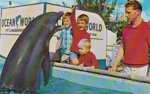Florida Fort Lauderdale Ocean World Porpoise Feeding Pool