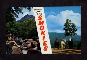 NC Greetings From Smokies Smoky Smokey Nat Park Tennessee, TN, North Carolina
