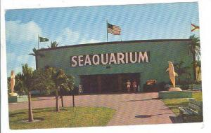 Sea Water Of The World, Miami, Florida, 40-60´s