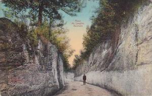 Limestone lined, Road Mt. Langton, Bermuda, PU