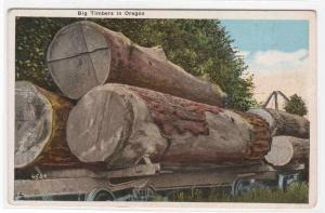 Logging Railroad Cars Oregon 1920c postcard