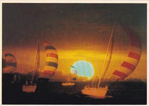 Sunset Sailboat Racing Gulf Coast Florida