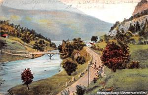 Norway Old Vintage Antique Post Card New Road at Eide Hardanger 1913