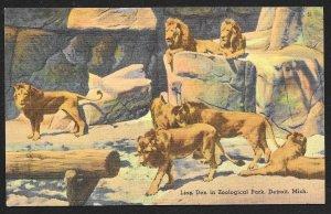 Lion Den Exhibit Zoological Park Detroit Michigan Unused c1940s