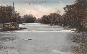 Honeoye Creek Bloomfield, New York Postcard