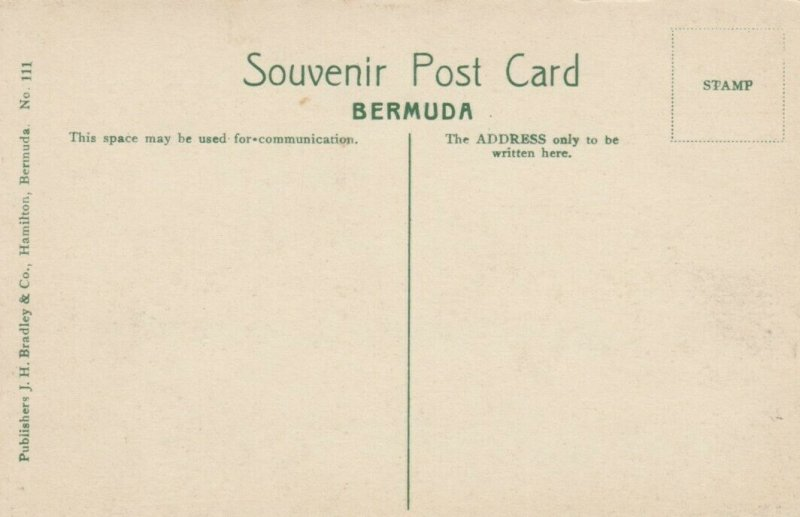 BERMUDA , 00-10s ; S.S. Bermudian in Hamilton Harbour
