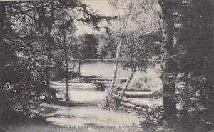 Maine South Hope Alford Lake Camp Artuve