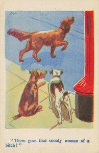 Comic Postcard Garland, Rudolf & Co. W120, Seaside Joke, Humour KL6