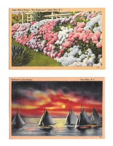 NJ Cape May Flower Hydrangea Sailboats Sunset 2 Vntg Linen New Jersey Postcards