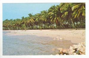 Playa de Juan Dolio / Juan Dolio Beach,Dominican Republic 1960-70s