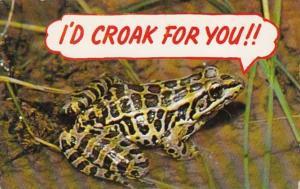 Frog Humopur I'd Croak For You