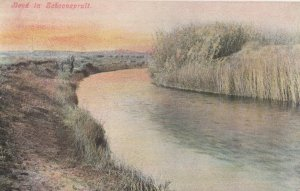 Bend In Schoonspruit South Africa Old Postcard