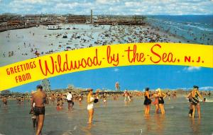 Wildwood by the Sea NJ~Banner Greeting~Bathing Beach Beauty~Roller Coaster~1965