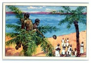 Coconuts, Oceania, Nourishing Food, Echte Wagner German Trade Card *VT31U
