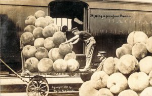 1909 RPPC Shipping a Few of Our Peaches Exaggeration Train Real Photo Postcard