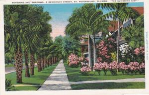 Florida St Petersburg Residential Street Scene