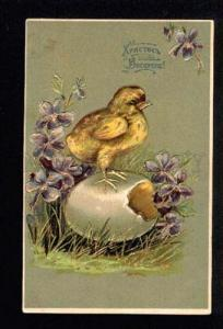 043551 EASTER Chicken. Vintage Russian Embossed PC