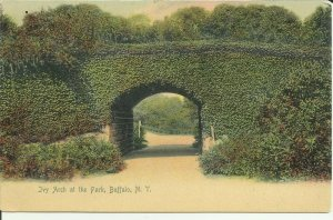 Buffalo, N.Y., Ivy Arch At The Park, ROTOGRAPH,UDB