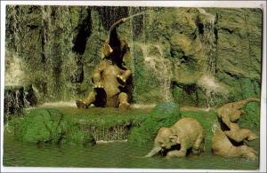 FL - Orlando. Elephant Bathing Pool, Walt Disney World
