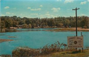 Mammoth Spring Arkansas Playground Series~Lion's Club 1950s Postcard