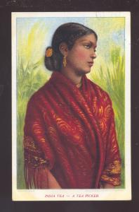 INDIA TEA A TEA PICKER WOMAN WESTFIELD ILLINOIS VINTAGE ADVERTISING POSTCARD