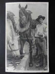 Country Theme Depicts SHIRE HORSE AT THE TROUGH c1905 Postcard