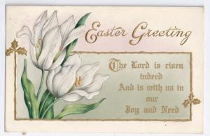 Vintage Easter Postcard White Tulips w Gold Embossed Whitney