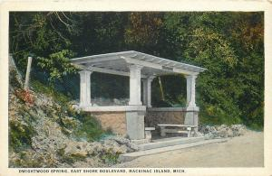 Mackinac Island Michigan~Benches @ Dwightwood Spring on East Shore Blvd c1915