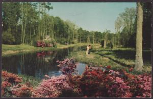 Jefferson Davis Shrine,Biloxi,MS Postcard BIN