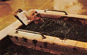 Taking a Mud Bath, Dr. Wilkinson's Hot Springs CALISTOGA c1960s Vintage Postcard