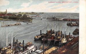 Bridgeport Connecticut~Big & Little Sailboats~Paddlewheel Steamer~Harbor c1907