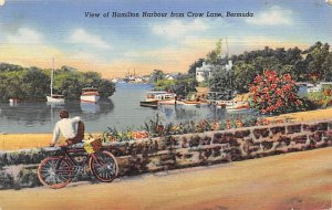 View of Hamilton Harbour from Crow Lane Bicycle Bermuda Island Postal used un...