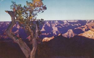 Grand Canyon East Rim Drive Arizona Fred Harvey 1965