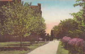 St. Joseph Convent, Rose Lane - Southwestern End Of St. Joseph Convent, Garfi...