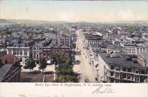 New York Binghamton Birds Eye View Looking West 1906