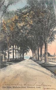 Stamford Connecticut Wallacks Point Elm Drive Antique Postcard K76550