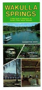 Wakulla Springs, Florida 4 X 9 inch Vintage Advertising Postcard