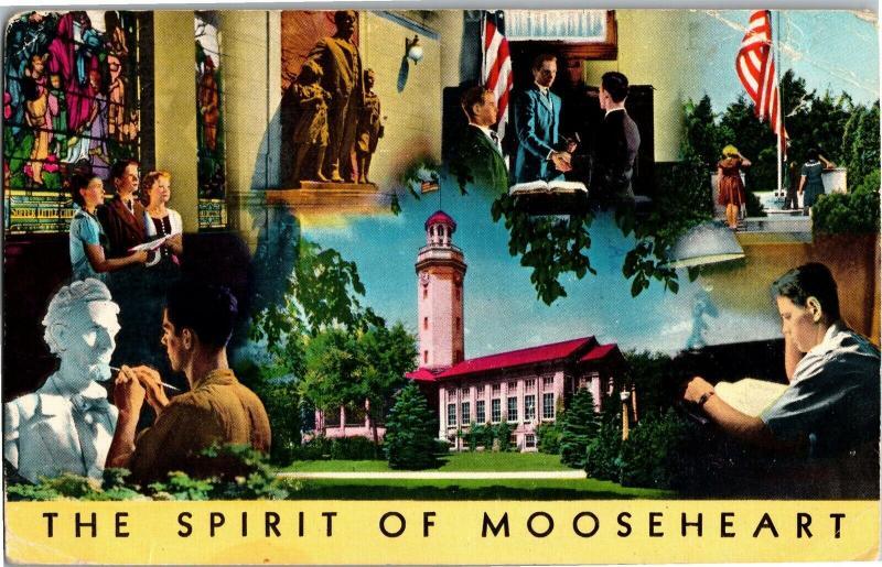 Spirit of Mooseheart Fraternity Membership Drive Women of the Moose Postcard P05